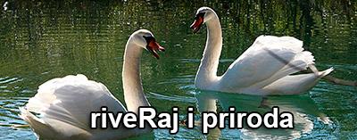 Riveraj-i-priroda